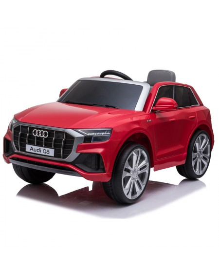 Audi Q8 12v battery and remote control