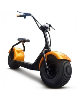 MOTO ELECTRICA 1000W 60V
